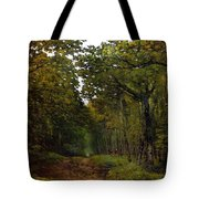 Avenue Of Chestnut Trees Tote Bag