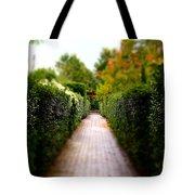 Avenue Of Dreams 2 Tote Bag