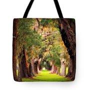 Avenue Of Oaks 2 I Am The Way Tote Bag