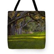 Avenue Of Oaks 2 St Simons Island Ga Tote Bag