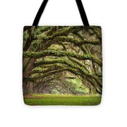 Avenue Of Oaks - Charleston Sc Plantation Live Oak Trees Forest Landscape Tote Bag by Dave Allen