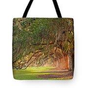 Avenue Of Oaks Tote Bag