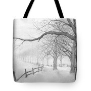 Avenue Of Trees Tote Bag