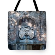 Avertine Hill Tote Bag