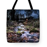 Avoca Fish Hatchery  Tote Bag