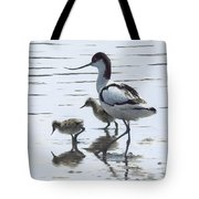 Avocet And Chicks Tote Bag