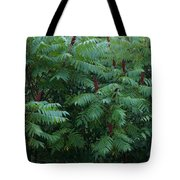 Awaiting The Sumac Tote Bag