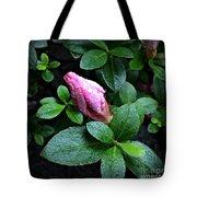 Awakening - Flower Bud In The Rain Tote Bag