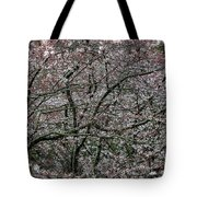 Awash In Cherry Blossoms Tote Bag