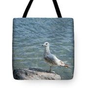 Away From The Crowd Tote Bag