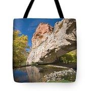 Ayres Natural Bridge Tote Bag