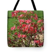 Azalea Bush 2  Tote Bag