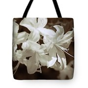 Azalea Flowers In Sepia Brown Tote Bag