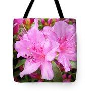 Azalea Garden Art Prints Pink Azaleas Flowers Baslee Troutman Tote Bag