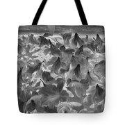 Azaleas Black And White Tote Bag