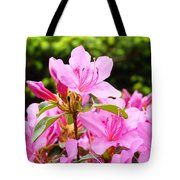 Azaleas Pink Azalea Flowers Artwork 12 Landscape Art Prints Tote Bag