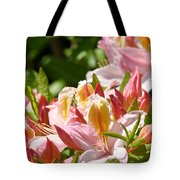 Azaleas Pink Orange Yellow Azalea Flowers 6 Summer Flowers Art Prints Baslee Troutman Tote Bag