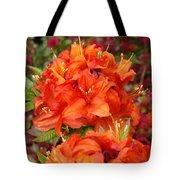 Azaleas Rhodies Art Prints Azalea Flowers Giclee Baslee Troutman Tote Bag