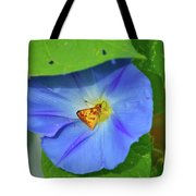 Azure Morning Glory Tote Bag