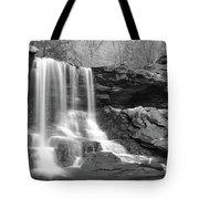 B Reynolds Falls Tote Bag