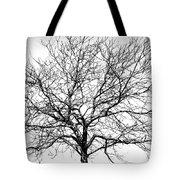 B/w Tree #1 Tote Bag