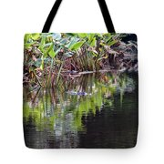 Babcock Wilderness Ranch - Alligator Den Tote Bag