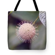 Babcock Wilderness Ranch - Buttonbush Tote Bag