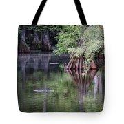 Babcock Wilderness Ranch - Peaceful Alligator Lake Tote Bag
