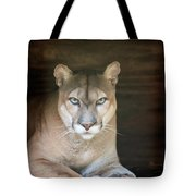 Babcock Wilderness Ranch - Portrait Of Oceola The Panther Tote Bag