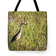 Babcock Wilderness Ranch - Sandhill Crane Tote Bag