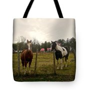 Babe And Brandy Tote Bag