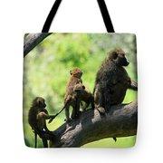 Baboon Family Tote Bag