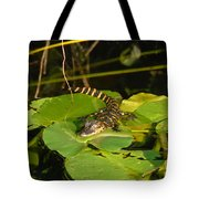 Baby Alligator Tote Bag