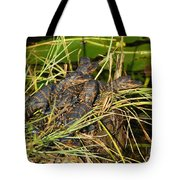 Baby Alligators Tote Bag