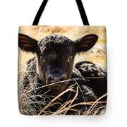 Baby Angus Calf Hideaway Tote Bag
