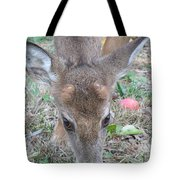 Baby Backyard Button Buck Tote Bag
