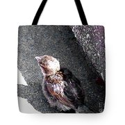 Baby Bird - Toyoung To Fly Tote Bag