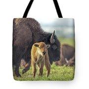 Baby Bison Tote Bag