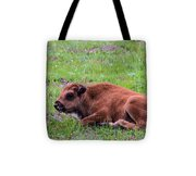 Baby Bison Tote Bag