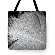 Baby Blue Dew Drops On Feather Tote Bag