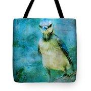 Baby Blue Jay Tote Bag