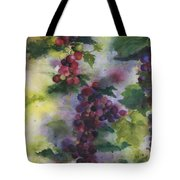 Baby Cabernet I  Triptych  Tote Bag