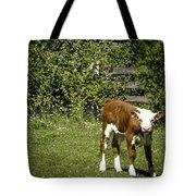 Baby Calf 2 Tote Bag