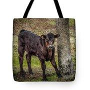 Baby Calf Tote Bag