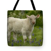 Baby Calf With Bluebonnets Tote Bag