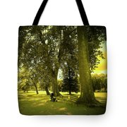 Baby Carriage In A Park Tote Bag