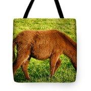 Baby Donkey Tote Bag