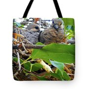 Baby Doves 1 Tote Bag