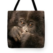 Baby Gorilla Close-up Hiding Mouth With Hands Tote Bag