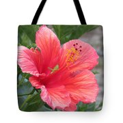 Baby Grasshopper On Hibiscus Flower Tote Bag
